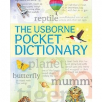 USBORNE POCKET DICTIONARY, THE (pb)