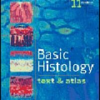 BASIC HISTOLOGY: TEXT AND ATLAS (W/CD) 11e(pb)2005