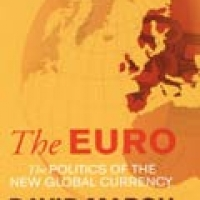 EURO: THE POLITICS OF THE NEW GLOBAL CURRENCY, THE (pb)2010